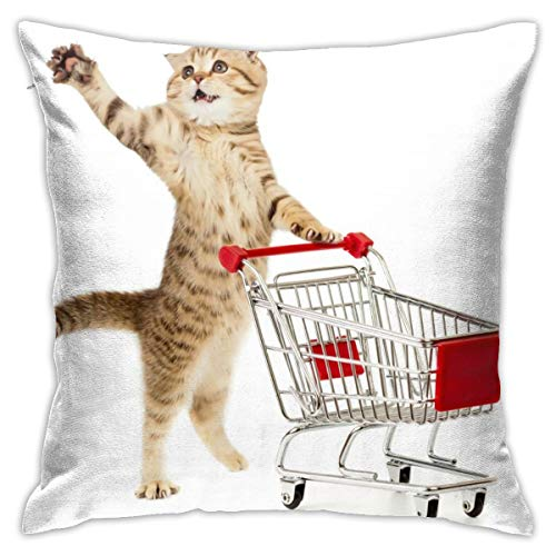 GYMARKET Best Decorative Pillowcases, Fall Home Decor Cushion Cover, Cat with Shopping Cart One Arm in The Air Funny Kitten Cozy Pillow Cover Allergy Proof for Bedroom Patio 18x18 Inch