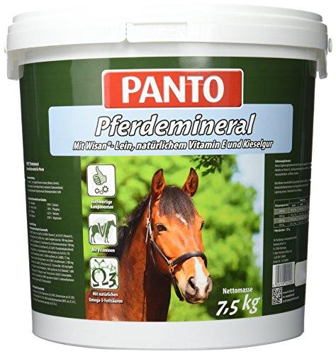 Panto -   Pferdefutter,