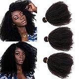 SAJANDA Fasci di capelli umani brasiliani afro crespi, fasci ricci crespi afro afroamericani di grado 9A, tessuto naturale afro crespo 100% non trattato 3 pacchi colore naturale (12 14 16 pollici)