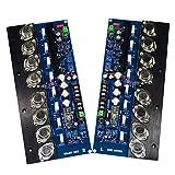 huiingwen Scheda Amplificatore Valvolare 2Pcs, Amplificatore di Potenza HiFi ON15025 Sigillato in Oro 300W Amplificatore di Classe A