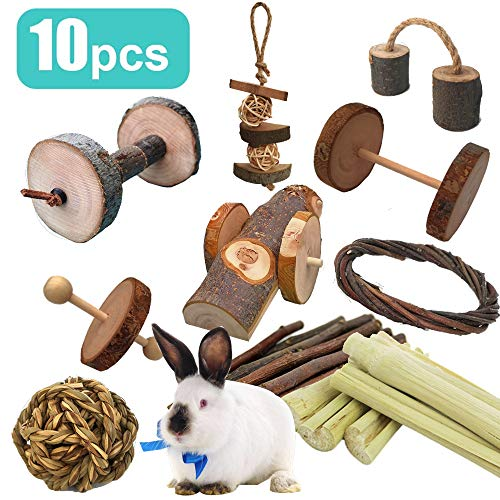 10Pcs Pets Guinea Pig Toys, Natural Apple and Birch Made, Fun Dumbbell Exercise Toy, Keep Your Little Pet Closer to Nature, Teeth Care Molar, for Chinchilla Hamster Rabbits Bird Rat Gerbil (10pcs)