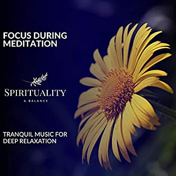 Focus During Meditation - Tranquil Music For Deep Relaxation