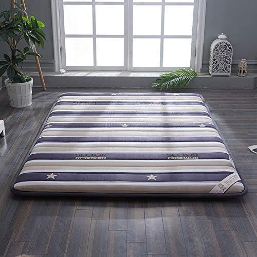 FYBDZCN Tatami Floor Mat,Traditional Japanese Futon Tatami Mattress Bed Dorm Thick Folding Mattress Topper Washable Student Dormitory Mattress Pad C 90x190cm(35x75inch)