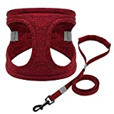 Didog Escape Proof Small Dog Harness with 5ft Leash Set,Soft Padded Vest Harness for Puppy and Cat Walking,Easy to Put on & Take Off,Red,Small Size