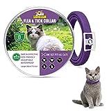 Collare Antipulci e Zecche per Gatti, Collare Antipulci per Gatti Impermeabile Misura Regolabile e Naturale con Protezione di 8 Mesi, pulci e zecche Trattamento Efficace per Gattini (Viola-1 Pack)