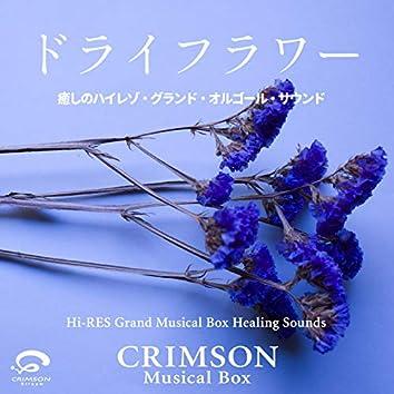 Dry Flower / Original Cover - Hi-RES Grand Musical Box Healing Sounds - Single