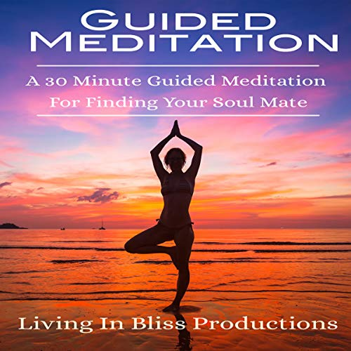 Guided Meditation: A 30 Minute Guided Mediation for Finding Your Soul Mate audiobook cover art