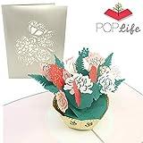 PopLife Greeting Cards Poplife cartes de voeux fleur rose bouquet popup carte fête des mères, joyeux anniversaire, mariages, remise des diplômes, toute l'occasion, anniversaire, cadeau de fiançailles