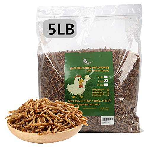 5 lbs Dried Mealworms, 100% Non-GMO Natural High-Protein,Treats for Chicken, Fish, Bird Food(5LB)