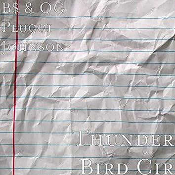 Thunder Bird Cir