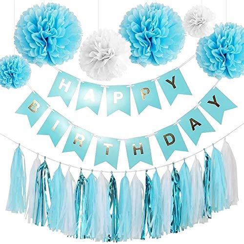 Blue Birthday Party Decorations -1st Year Birthday Party, Light Blue Birthday (WGW) Party, Blue Tassel Garland, Blue Birthday Banner, Blue Pom Pom