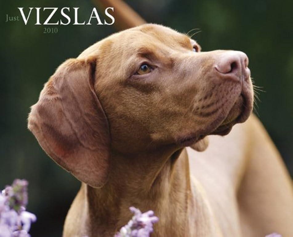 ブリード国内の好色なJust Vizslas 2010 Calendar
