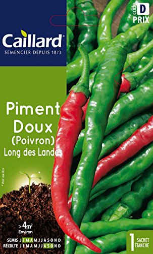 Caillard PFCC14604 Graines de Piment Doux Long des Landes