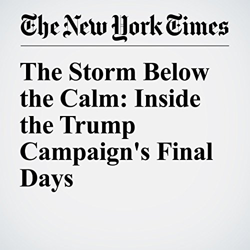 The Storm Below the Calm: Inside the Trump Campaign's Final Days audiobook cover art