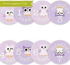 Home-organizer Tech Baby Month Stickers Cartoon Owl Boy Girl 1-12 Monthly Milestone Sticker Best Birthday Shower Gift Party Photo Age Sticker