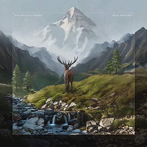 Rise Radiant (Limited CD Digipak)
