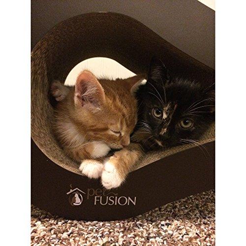 """PetFusion """"Lounge"""" Luxus-Kratzbaum für Katzen - 4"""