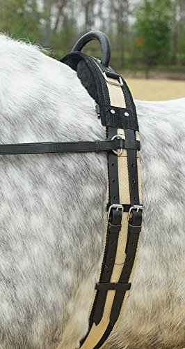 BUSSE Longiergurt mit Handgriff, schwarz, Pony,