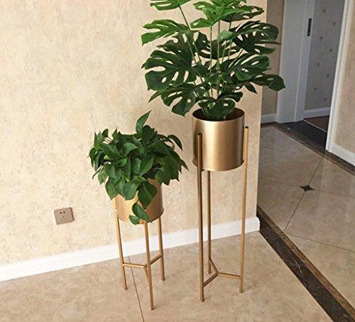 LYQZ Nordic Eisen Blume Ständer Moderne Boden-Stil Goldenen Wohnzimmer Dekoration Blume Rack Haus Pflanze Blumentopf Rahmen Balkon Display Regal (größe : 22 * 22 * 90cm) - 6