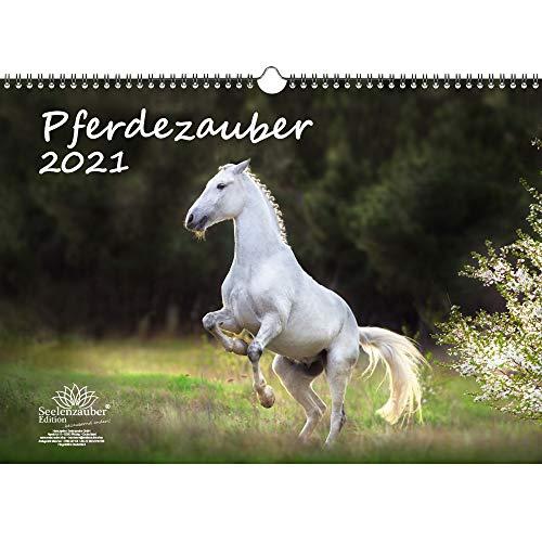 Pferdezauber DIN A3 Kalender für 2021 Pferde und Fohlen - Geschenkset Inhalt: 1x Kalender, 1x Weihnachtskarte (insgesamt 2 Teile)