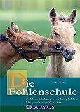 Die Fohlenschule: Fohlenerziehung vom Saugfohlen bis zum ersten Anreiten (Cadmos Pferdebuch)