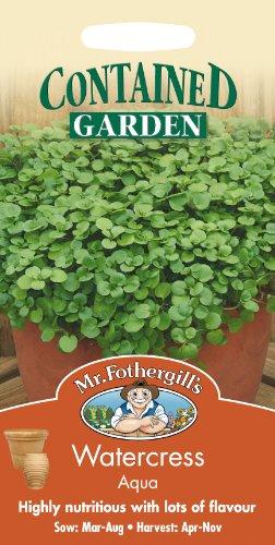 Mr Fothergills???Flux des paquets???herbes aromatiques???cresson Aqua???1000?graines