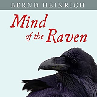 Mind of the Raven cover art