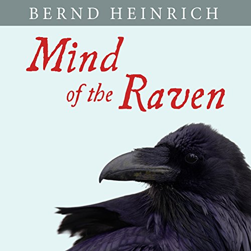 Mind of the Raven Titelbild