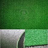 RICEL SUD ***** FINTA ERBA 1 X 10 MT Manto Prato sintetico Tappeto in erba sintetica zerbino