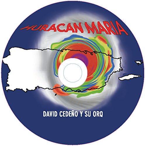 David Cedeno Y Su Orquesta