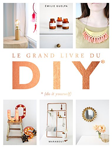 Le grand livre des DIY* *(Do it yourself)