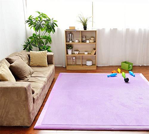 OHHCO Alfombra de refrigeración para sala de estar, dormitorio, ventana, terciopelo coral, espuma viscoelástica, 200 x 260 cm, para sala de estar (tamaño: 200 x 260 cm)