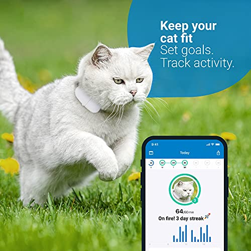 Tractive GPS Cat Tracker with Custom Cat Collar, Follow them Everywhere, 24/7 Location and 365-day History