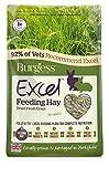 Burgess Excel Forage Dried Grass, 1 kg