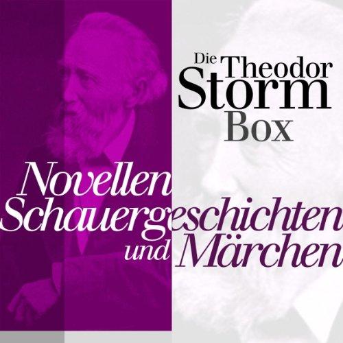 Die Theodor-Storm-Box Titelbild