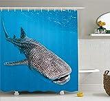 Nyngei Meerestiere Dekor Duschvorhang Set Walhai Schwimmen Raubtiere Jäger Klares Wasser Unter Dem Meer Bild Badezimmer Zubehör Blau Grau