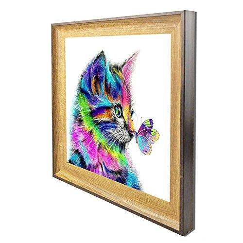 DIY Diamond Painting Set 5D Diamant Malerei Katze (Diamond Painting With Frame, 20X20cm)