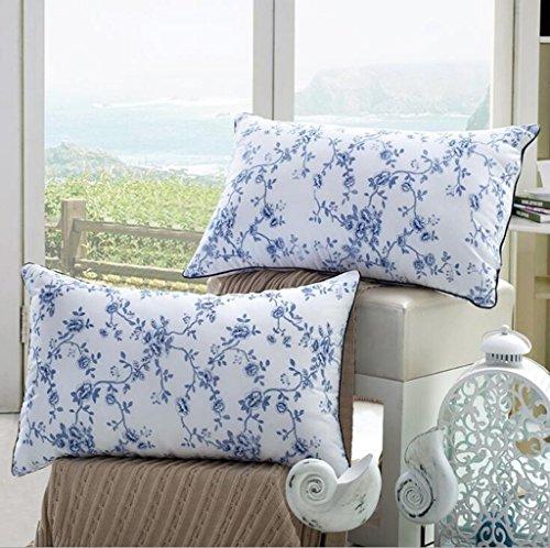 Wmshpeds Plumas de Porcelana Azul y Blanco Terciopelo Almohada Almohadas Almohada perlé Hotel Almohada de Plumas Core