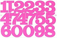 (シャシャン)XIAXIN 防水 PVC製 数字 ナンバー ステッカー セット 耐候 耐水 ローマ字 数字 キャラクター 表札 スーツケース ネームプレート ロッカー 屋内外 兼用 TS-520 (ピンク, 1点)