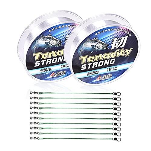 2 Rouleaux de Fil de pêche en Nylon de 100 m Fil de pêche en Nylon Transparent monofilament diamètre d environ 8 mm et 10 Fils de pêche de 15 cm avec Boucles en Acier Inoxydable(Vert)