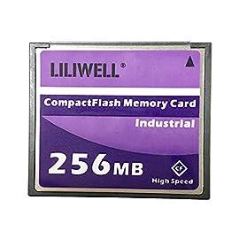 Liliwell original 256 mb compactflash card industrial high speed digital camera cnc flash memory card 256m 1 compactflash memory card high speed 133x for nikon d70 digital camera memory card storage capacity: 256 mb compactflash