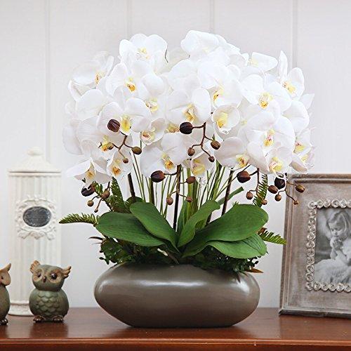 Hctina Künstliche Fake Blume Phalaenopsis Orchidee Keramik Vase weiße Vase Pflanzen Topfpflanzen