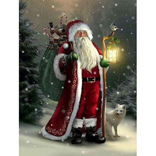 SKRYUIE 5D Full Drill Diamond Painting Christmas Street Lights Santa Claus and The Fox by Number Kits, Paint with Diamonds Arts Embroidery DIY Craft Set Arts Decorations (12x16 inch)