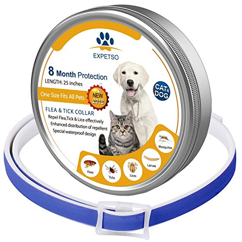 Expetso Flea and Tick Collar for Dog and Cat 8 Months Protection Blue