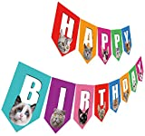 Cat Birthday Banner, Happy Birthday Sign with Cat Face, Colorful Cat Bday Party Bunting Decoration