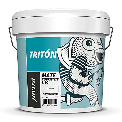 PEINTURE MURS ET PLAFONDS peinture couvrante pour intérieur-extérieur. (5 KG)