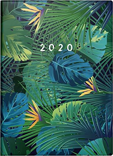 rido/idé 701830701 Taschenkalender Technik III (1 Seite = 2 Tage, 100 x 140 mm, Grafik-Einband Tropical, Kalendarium 2020)