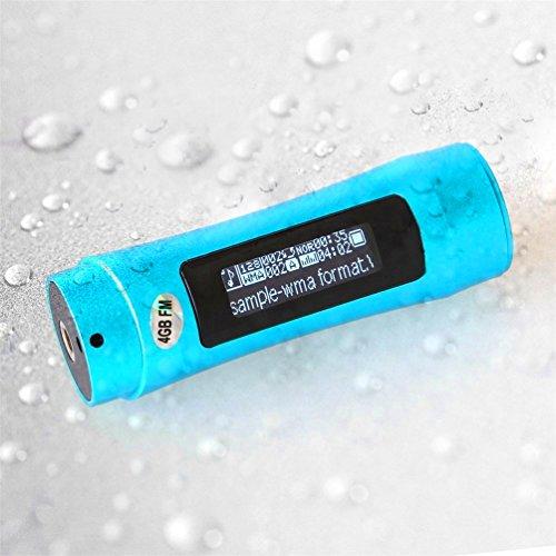 smartera® 4GB Wasserdicht Unterwasser MP3mit LED Display + FM Radio Anzug für Schwimmen, SPA, Surfen, Joggen, Klettern und andere Sport (blau)