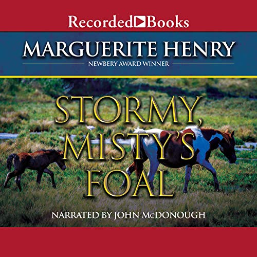 Stormy, Misty's Foal Audiobook By Marguerite Henry cover art