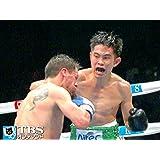 井岡一翔×ファン・カルロス・レベコ(2015) WBA世界フライ級タイトルマッチ